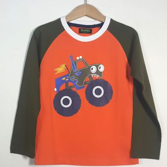 Printed Cotton Long Sleeves T-Shirt For Boys - K10034