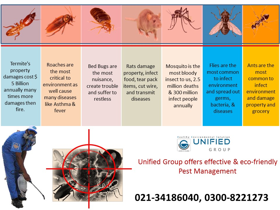 Effective Fumigation, Termite Proofing, Tank Cleaning, Seepage Control, Heat Insulation Services_4